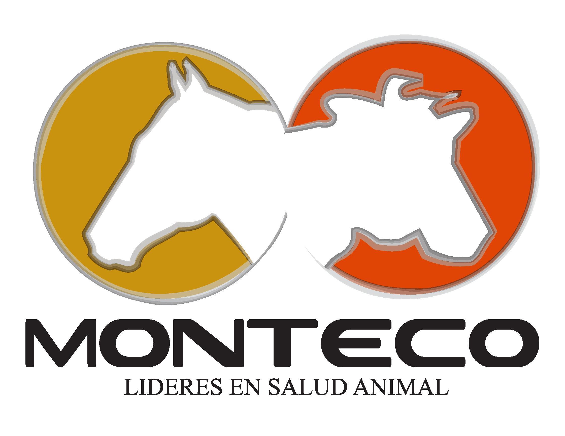 Monteco Logo-page-001